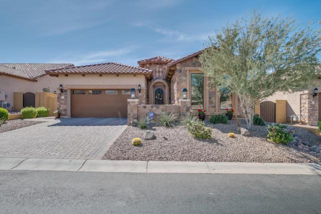 8543 E Kael Street, Mesa, AZ 85207 (MLS #5746139) :: My Home Group