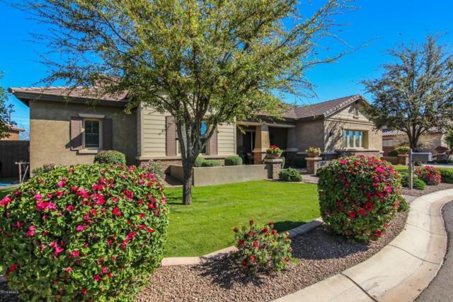 21966 E Pickett Court, Queen Creek, AZ 85142 (MLS #5746173) :: Santizo Realty Group