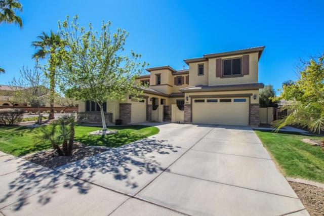 4234 S Marble Street, Gilbert, AZ 85297 (MLS #5746194) :: Occasio Realty