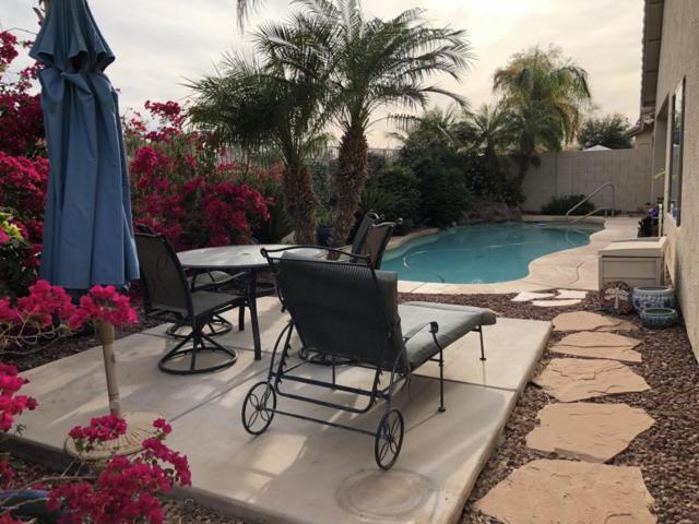 12937 W Flower Street, Avondale, AZ 85392 (MLS #5746225) :: Sibbach Team - Realty One Group