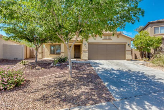 2293 W San Tan Hills Drive, Queen Creek, AZ 85142 (MLS #5746263) :: Occasio Realty