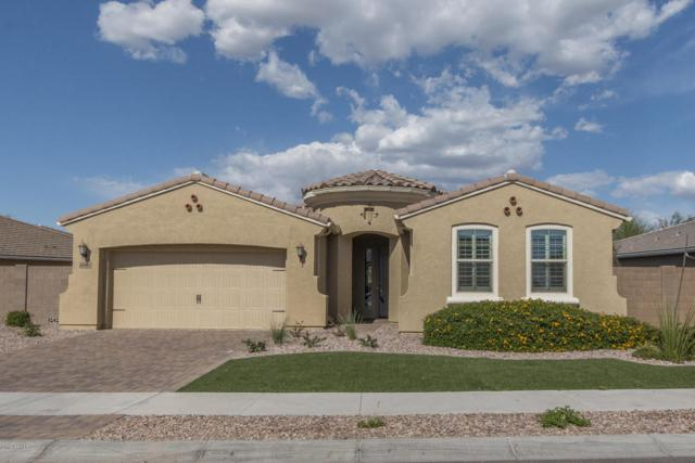 9008 W Diana Avenue, Peoria, AZ 85345 (MLS #5746290) :: Santizo Realty Group
