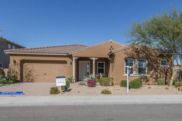 5066 N 146TH Drive, Litchfield Park, AZ 85340 (MLS #5746296) :: My Home Group