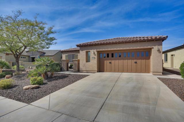 13066 W Cliffrose Road, Peoria, AZ 85383 (MLS #5746303) :: The Worth Group