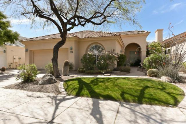 11919 E Del Timbre Drive, Scottsdale, AZ 85259 (MLS #5746306) :: Occasio Realty