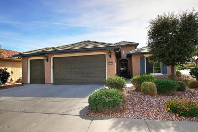 7991 W Discovery Way, Florence, AZ 85132 (MLS #5746384) :: Occasio Realty