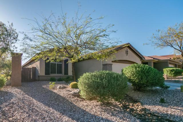 41508 N River Bend Court, Anthem, AZ 85086 (MLS #5746584) :: Occasio Realty