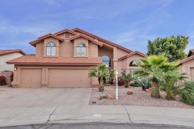 3619 E Desert Flower Lane, Phoenix, AZ 85044 (MLS #5746601) :: Yost Realty Group at RE/MAX Casa Grande