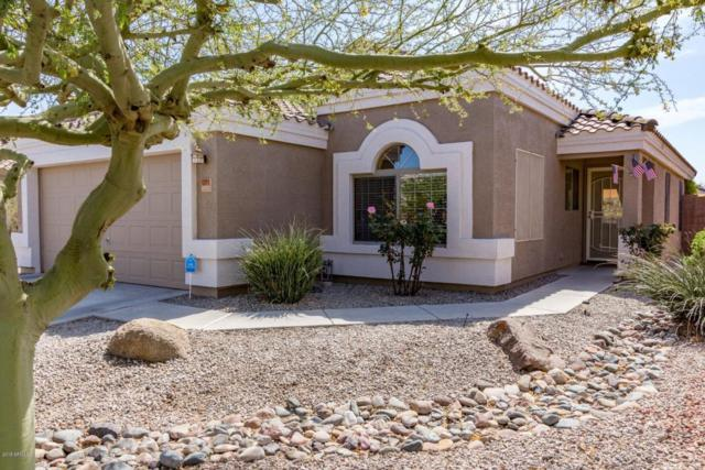 12571 W Lisbon Lane, El Mirage, AZ 85335 (MLS #5746675) :: Occasio Realty