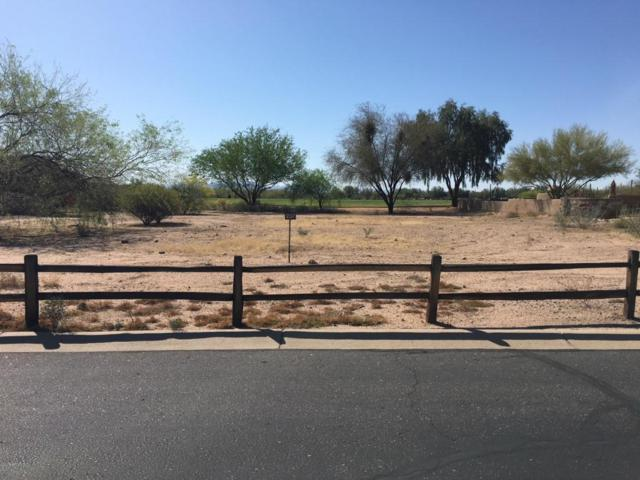 18613 N Tonto Verde Drive, Rio Verde, AZ 85263 (MLS #5746684) :: The Jesse Herfel Real Estate Group