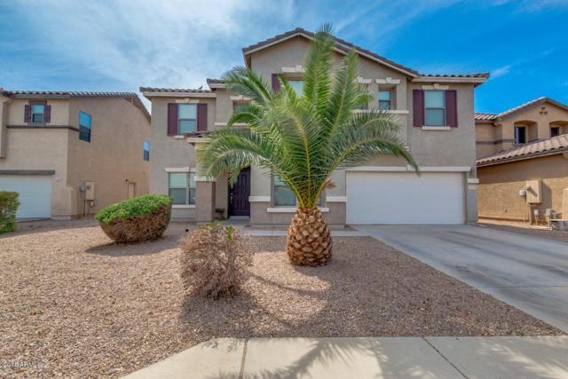 40090 N Orkney Way, San Tan Valley, AZ 85140 (MLS #5746700) :: My Home Group