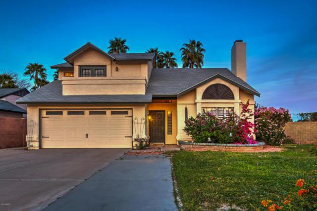 14601 N 44TH Street, Phoenix, AZ 85032 (MLS #5746723) :: Occasio Realty