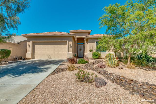29860 W Whitton Avenue, Buckeye, AZ 85396 (MLS #5746735) :: Santizo Realty Group