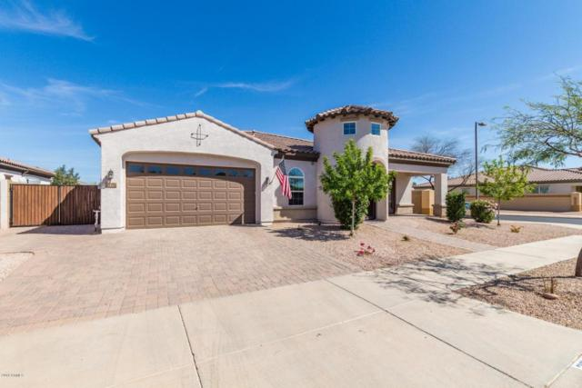 22492 E Pecan Lane, Queen Creek, AZ 85142 (MLS #5746760) :: Occasio Realty