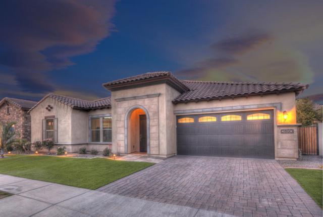 2890 E Sunrise Place, Chandler, AZ 85286 (MLS #5746788) :: Arizona 1 Real Estate Team