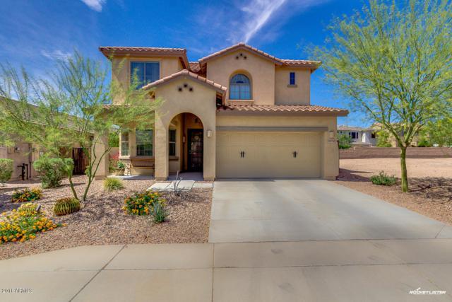 29730 N 120TH Lane, Peoria, AZ 85383 (MLS #5746809) :: Occasio Realty
