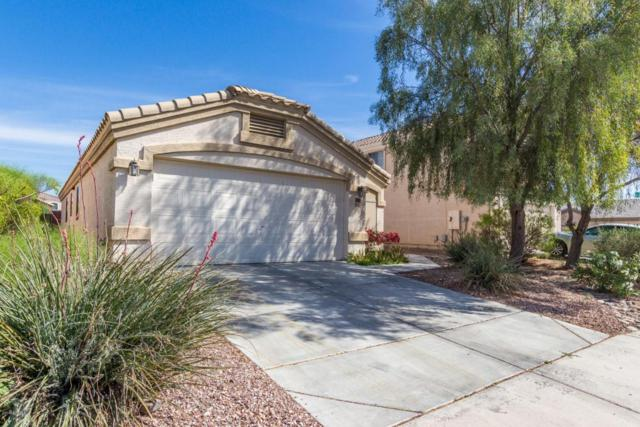 23928 W Desert Bloom Street, Buckeye, AZ 85326 (MLS #5746827) :: Sibbach Team - Realty One Group