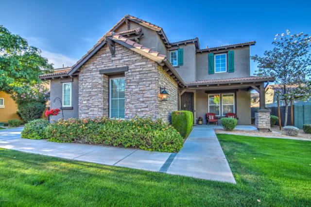 3674 E Sierra Madre Avenue, Gilbert, AZ 85296 (MLS #5746862) :: Occasio Realty