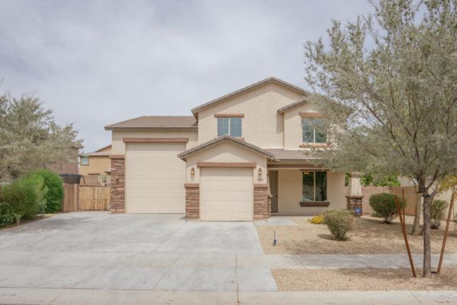 15794 W Jenan Drive, Surprise, AZ 85379 (MLS #5746865) :: Occasio Realty