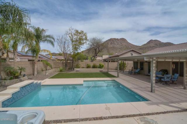 6418 W Briles Road, Phoenix, AZ 85083 (MLS #5746867) :: REMAX Professionals
