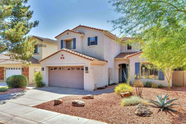 473 E Krista Way, Tempe, AZ 85284 (MLS #5746896) :: Santizo Realty Group