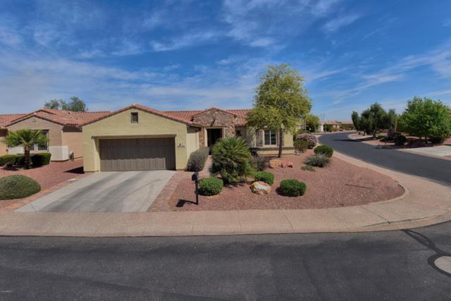 13746 W Nogales Drive, Sun City West, AZ 85375 (MLS #5746920) :: Sibbach Team - Realty One Group