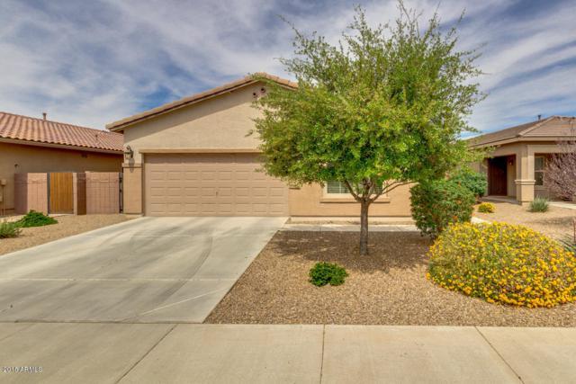 300 W Lyle Avenue, San Tan Valley, AZ 85140 (MLS #5746932) :: My Home Group