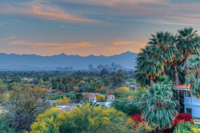 6113 N 42ND Street, Paradise Valley, AZ 85253 (MLS #5746970) :: Yost Realty Group at RE/MAX Casa Grande