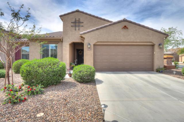 4774 W Posse Drive, Eloy, AZ 85131 (MLS #5746980) :: Keller Williams Legacy One Realty