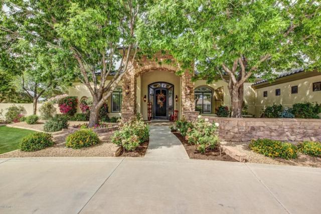 2562 E Scorpio Place, Chandler, AZ 85249 (MLS #5747012) :: The Jesse Herfel Real Estate Group