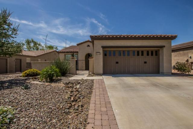 28590 N 123RD Lane, Peoria, AZ 85383 (MLS #5747069) :: Sibbach Team - Realty One Group