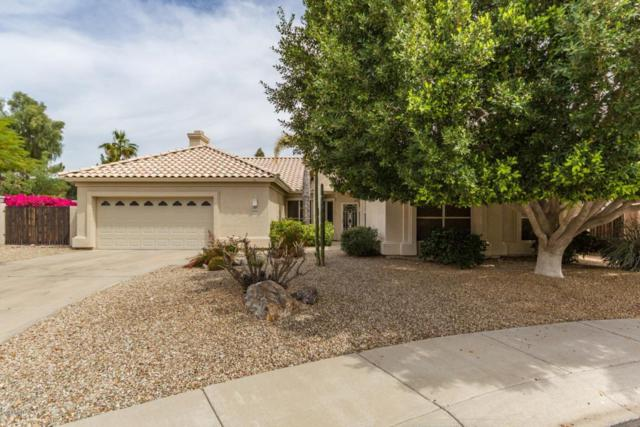 21532 N 65TH Avenue, Glendale, AZ 85308 (MLS #5747238) :: The Everest Team at My Home Group