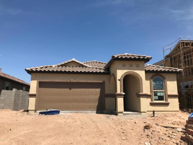 12002 W Lone Tree Trail, Peoria, AZ 85383 (MLS #5747248) :: Occasio Realty