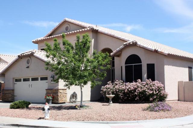 20403 N 29TH Street, Phoenix, AZ 85050 (MLS #5747278) :: The Wehner Group