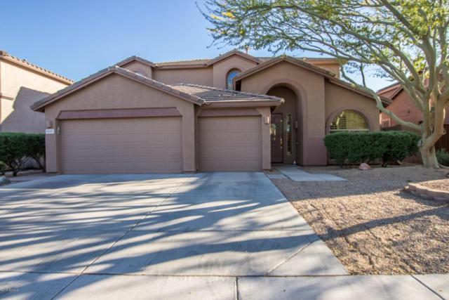8335 W Molly Lane, Peoria, AZ 85383 (MLS #5747356) :: The Laughton Team