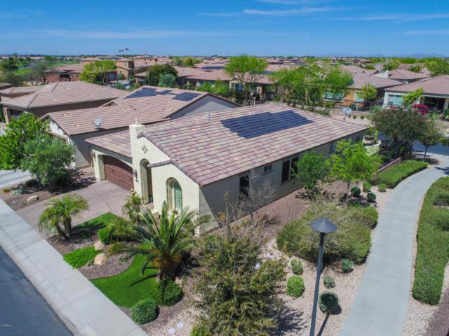 1698 E Adelante Way, San Tan Valley, AZ 85140 (MLS #5747376) :: The Wehner Group