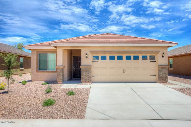 556 S 224TH Drive, Buckeye, AZ 85326 (MLS #5747380) :: The Wehner Group