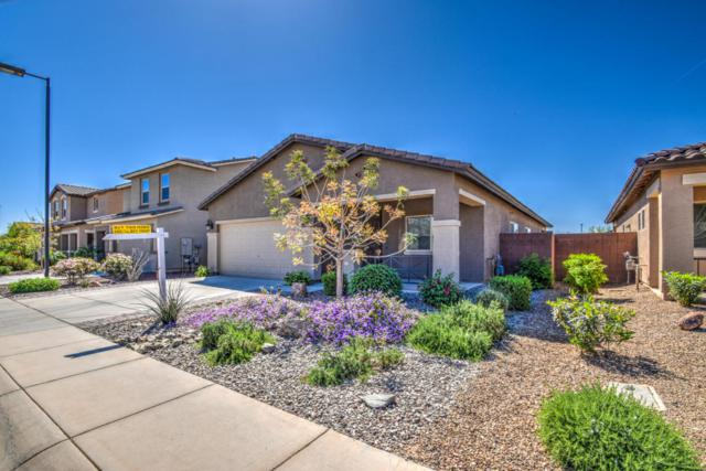 1457 W Hoptree Avenue, San Tan Valley, AZ 85140 (MLS #5747587) :: Santizo Realty Group