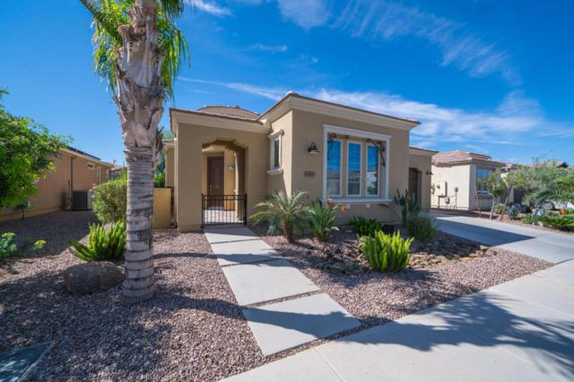 1789 E Hesperus Way, San Tan Valley, AZ 85140 (MLS #5747594) :: The Wehner Group