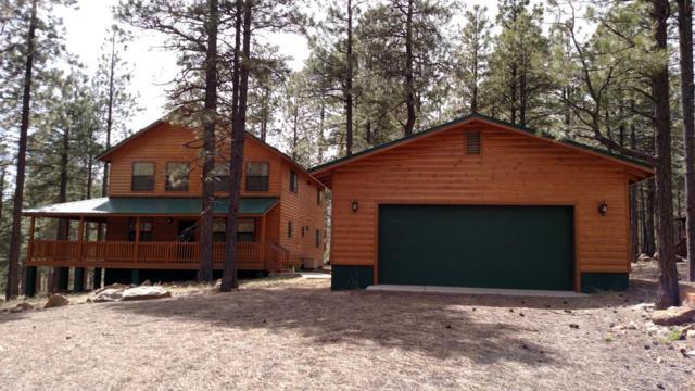 2914 Rim Loop, Forest Lakes, AZ 85931 (MLS #5747617) :: My Home Group