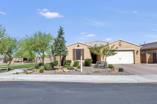 2608 E Saddlebrook Road, Gilbert, AZ 85298 (MLS #5747686) :: Occasio Realty