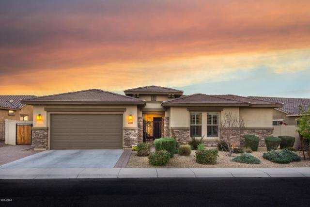 6708 S Lyon Drive, Gilbert, AZ 85298 (MLS #5747692) :: The Kenny Klaus Team