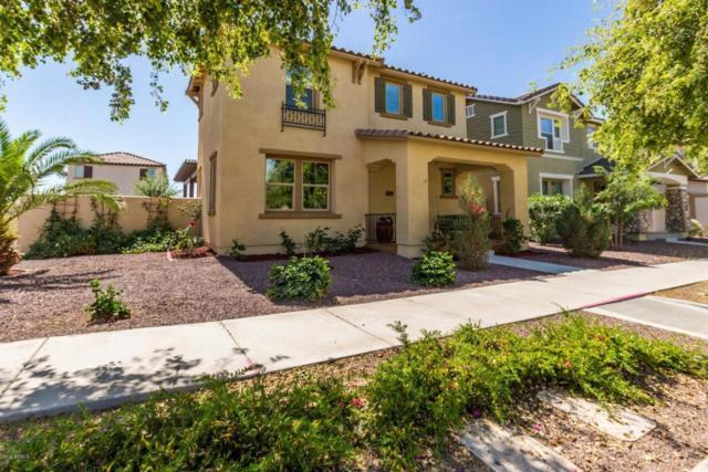 20819 W Legend Trail, Buckeye, AZ 85396 (MLS #5747764) :: Occasio Realty