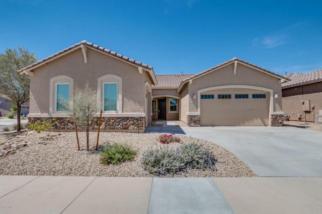 23982 N 165TH Drive, Surprise, AZ 85387 (MLS #5747777) :: Lifestyle Partners Team