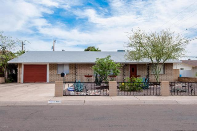 2305 W Tuckey Lane, Phoenix, AZ 85015 (MLS #5747790) :: Occasio Realty