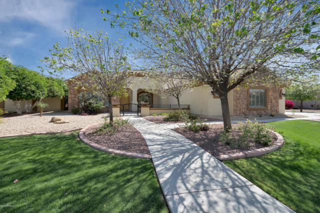 21283 E Excelsior Avenue, Queen Creek, AZ 85142 (MLS #5747874) :: The Wehner Group