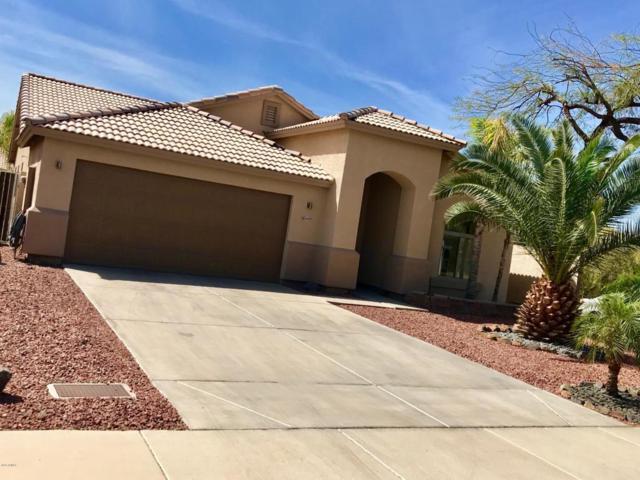 6439 W Villa Linda Drive, Glendale, AZ 85310 (MLS #5747907) :: Kortright Group - West USA Realty