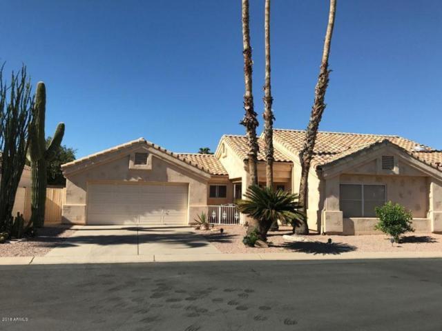 14640 W Sandcreek Trail, Surprise, AZ 85374 (MLS #5747984) :: My Home Group