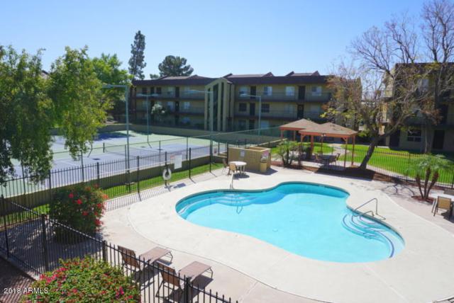 461 W Holmes Avenue #242, Mesa, AZ 85210 (MLS #5747993) :: Brett Tanner Home Selling Team
