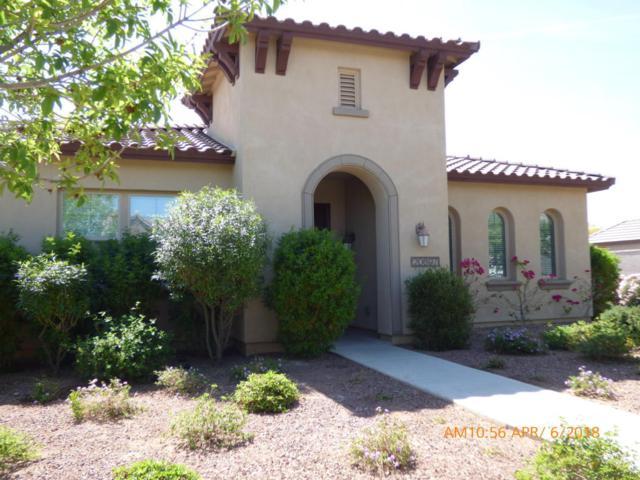 20697 W Hamilton Street, Buckeye, AZ 85396 (MLS #5748006) :: Occasio Realty